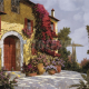 11405: Guido Borelli — Bouganville